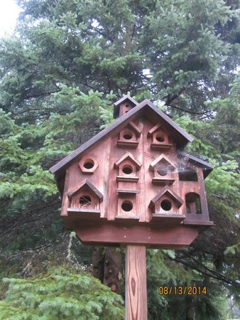 Pine Tree Motel & Cabins : The owners opt for a birdmotel vice birdhouse