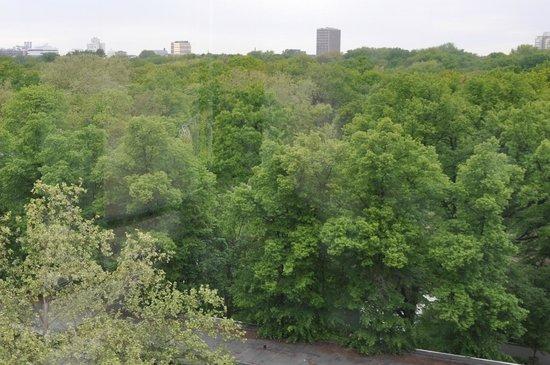 Pullman Berlin Schweizerhof: Widok z pokoju na park.