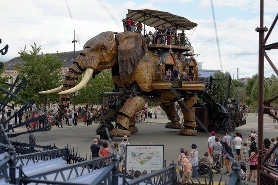 Les Machines de L'ile : le fameux éléphant