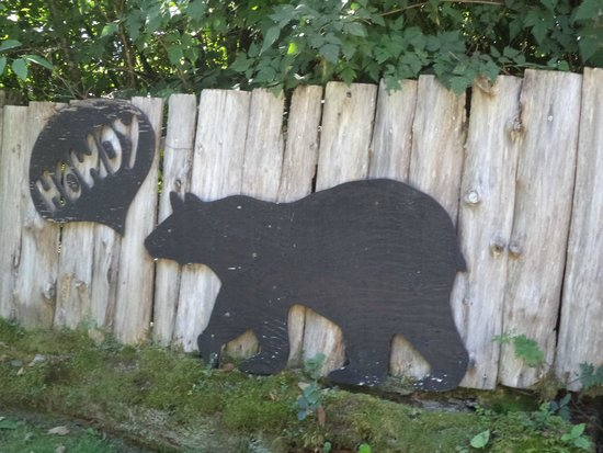 Surf Junction Campground: The entrance bear