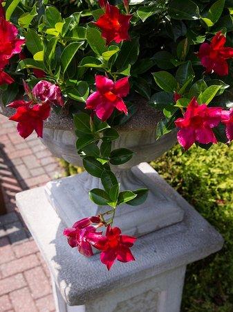 Radnor Hotel : Formal Gardens