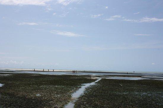 Uroa Bay Beach Resort : Playa