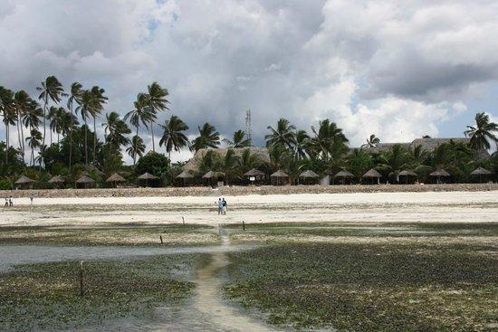 Uroa Bay Beach Resort : Al fondo la zona de hamacas desde la zona de baño con marea baja