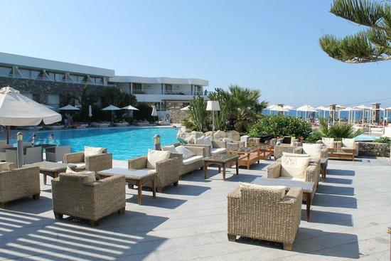 The Island Hotel : The main hotel pool.