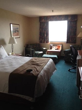 Ramada Saskatoon : The room