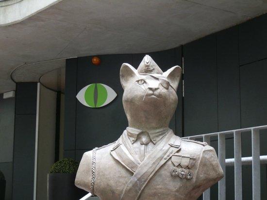 Hotel Gat Point Charlie: Cat At Gat Point Charlie