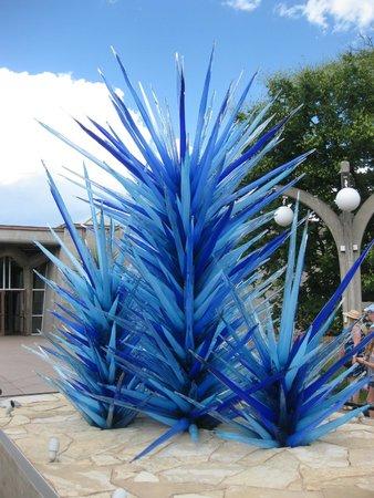 Denver Botanic Gardens: Wow