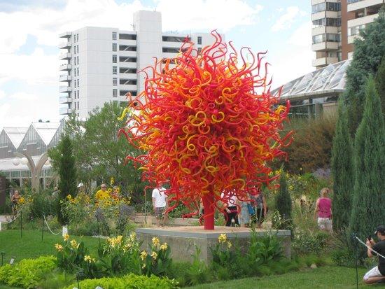 Denver Botanic Gardens: Makes you blind to the high rise