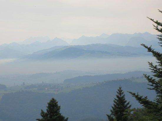 Uetliberg Mountain: Above the sea of fog