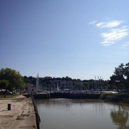 Le Domaine du Meunier : Mortagne sur Gironde