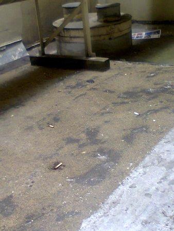 Handlery Union Square Hotel: mozziconi e rifiuti
