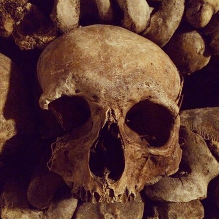 The Catacombs of Paris: Skull in the Catacombs...RIP