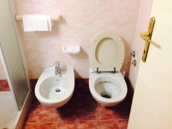 Hotel Villa Ombrosa : Bagno