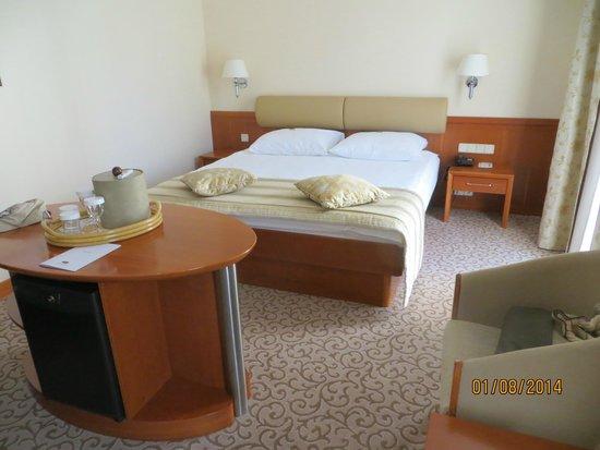 Grand Hotel Union: The Room