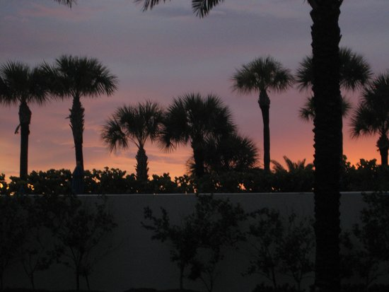 Hilton Clearwater Beach: Sunset from the pool