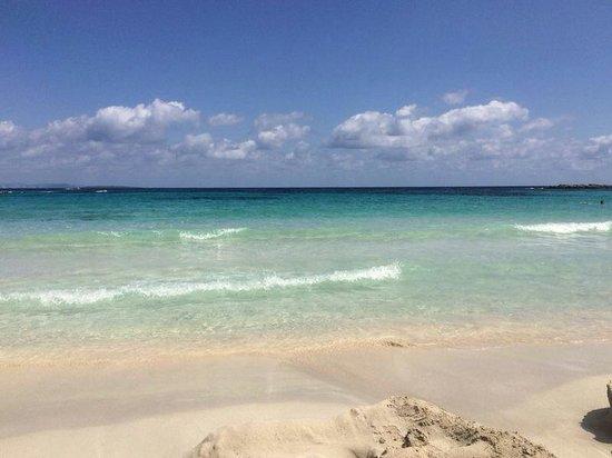 Insotel Hotel Formentera Playa: Playa De Formentera