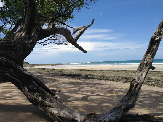 Avellanas Surf School: Playa Avellanas- serenity