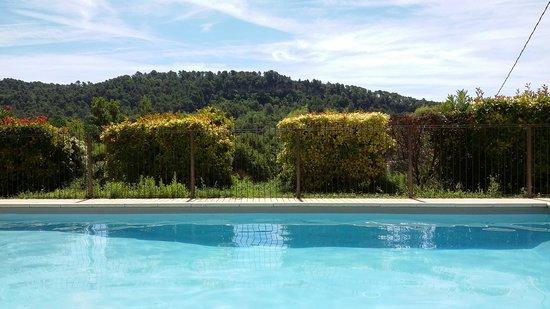 L'Oustaou du Luberon : Vue depuis mon lit-soleil, au bord de la piscine.