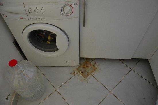 Desert Pearl Apartments: Вонючая дыра на кухне заклеена скотчем, но все равно разит!
