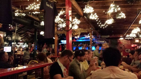 Picture Of Barking Crab, Boston