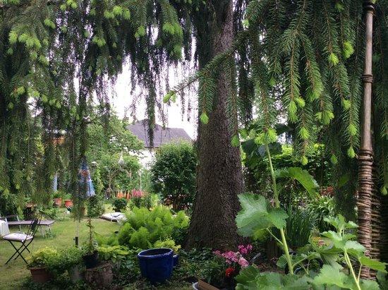 """Landgasthof """"Zum Ritter"""": Garden"""