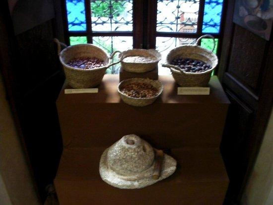 Musee de l'Art de Vivre Marocain: hier werden die Verarbeitungsschritte von Arganöl dargestellt