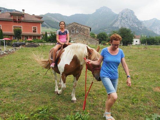 Hotel Rural El Torrejon: Finca del hotel y caballo
