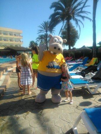 Hotel Best Sabinal: Hisperio!