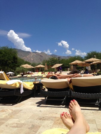 Westin La Paloma Resort and Spa: My view from my pool lounge chair