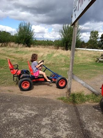 Farmer Palmer's Farm Park: enjoying the go karts at farmer palmers