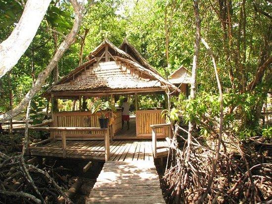 Welkom Hut at Titiru Eco Lodge