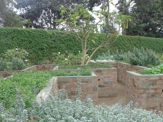 Foto de jardin de los sentidos trujillo the garden for Jardin de los sentidos