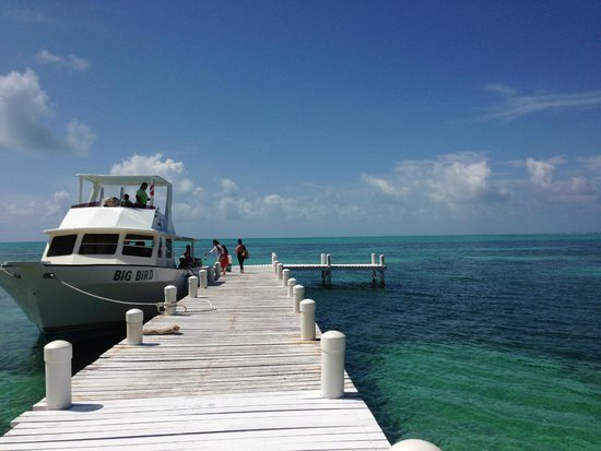 Blackbird Caye Resort: the Big Bird boat that took us to the blue hole
