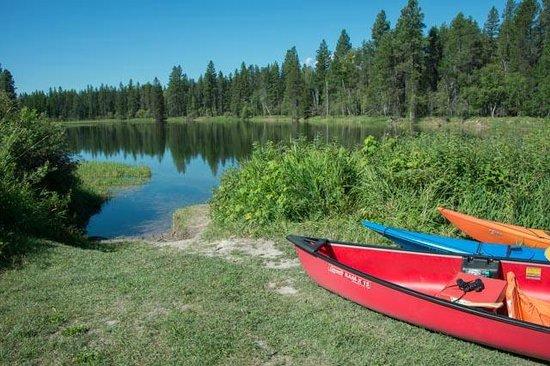 Swan River: Putin area