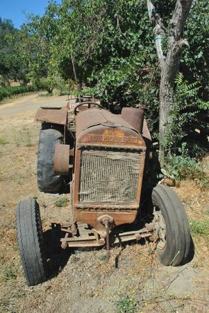 RustRidge B&B / Winery: One of the many old farmyard relics