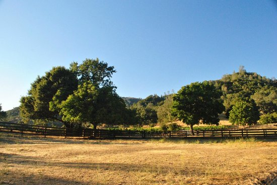 RustRidge B&B / Winery: View from the Ranch
