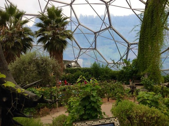 Eden Project: Med Dome