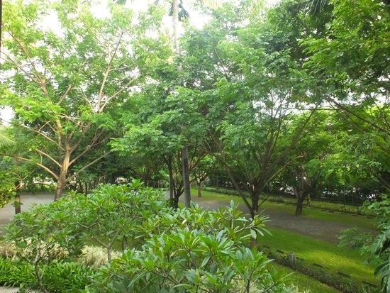 Courtyard by Marriott Bali Nusa Dua Resort : Hotel grounds