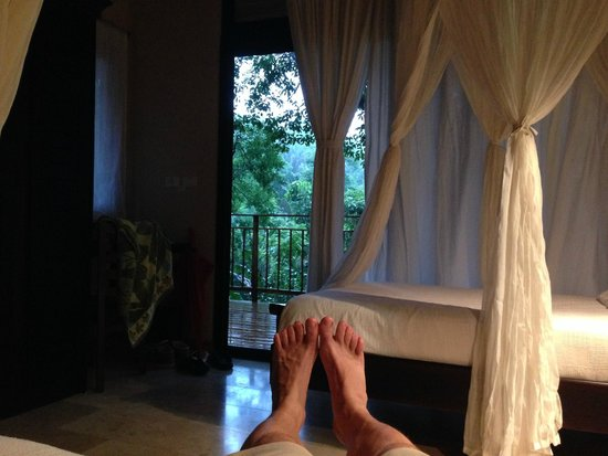 The Bodhi Tree Yoga Resort: Every room secluded, quiet and luxurious.