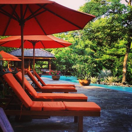 The Bodhi Tree Yoga Resort: You never want to leave or need to go anywhere.