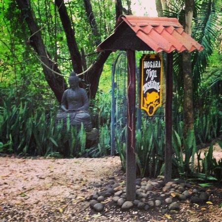 The Bodhi Tree Yoga Resort: Statues and serenity everywhere.