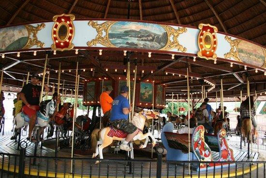 DelGrosso's Amusement Park: Carousel