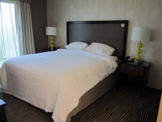 Hampton Inn & Suites Chattanooga/Hamilton Place: King bed