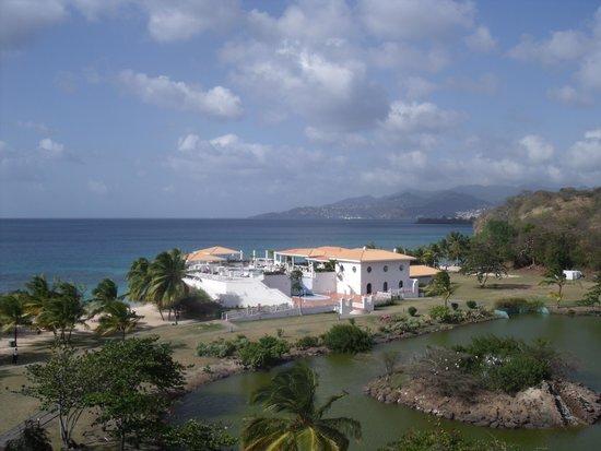Grenadian by Rex Resorts : Ocean view room