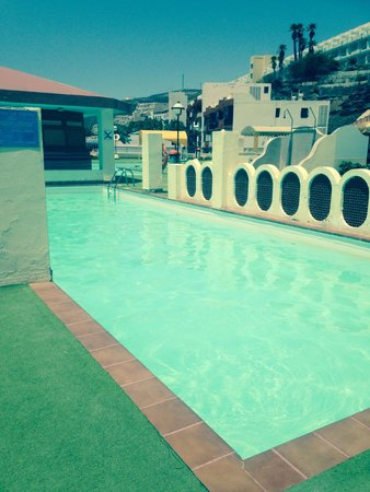 Palm Garden Apartments : Pool