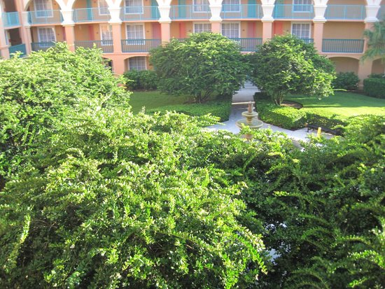Disney's Coronado Springs Resort: View from our front door