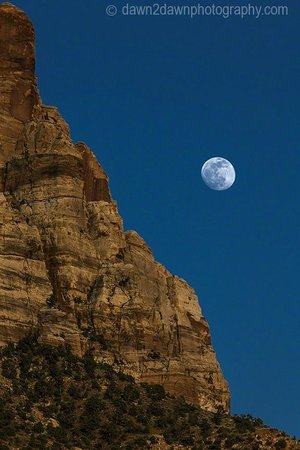 Cable Mountain Lodge : Zion Moon