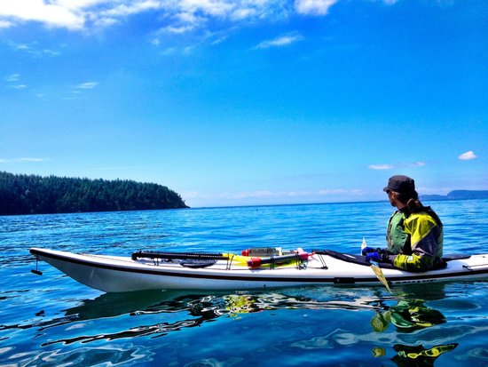 Anacortes Kayak Tours: A small speck of a porpoise beyond our guide.