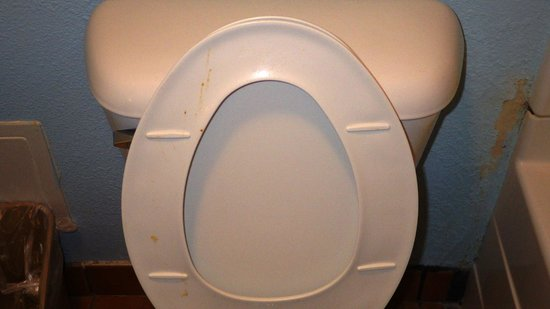 Econo Lodge: Toilet