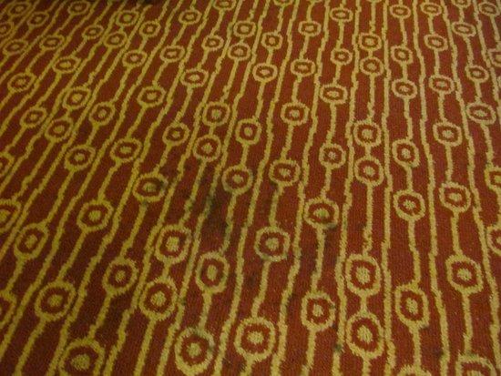 TownePlace Suites Denver West/Federal Center : carpets